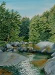 Rocky Broad River